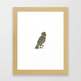 Mandala Kea from NZ Bird Collection Framed Art Print