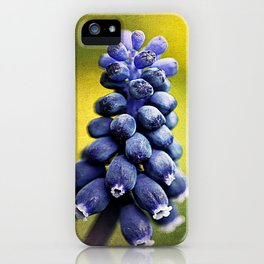 Muscari iPhone Case