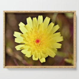 Yellow Desert Bloom by Reay of Light Photography Serving Tray