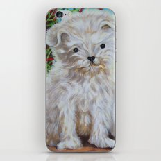 Who is the Cutest?? iPhone & iPod Skin