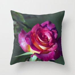 Longwood Gardens - Spring Series 84 Throw Pillow