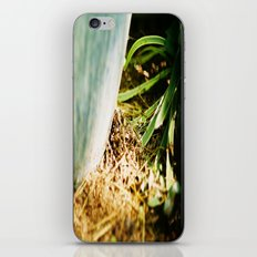 Another  View iPhone & iPod Skin