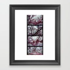 Under the trees: early spring Framed Art Print
