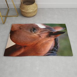 Profile of Horse Rug