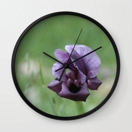 Iris haynei Wall Clock