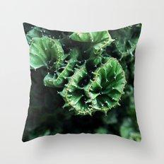 Emerald green Cactus Botanical Photography, Nature, Macro, Throw Pillow