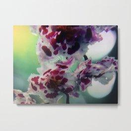 Flowers 1 | Fleurs Metal Print