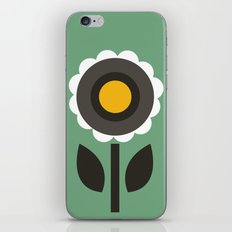 Evergreen Aster iPhone & iPod Skin