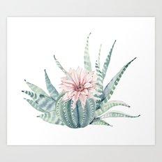 Petite Cactus Echeveria Art Print