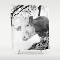 cow Shower Curtains featuring COW by Julia Aufschnaiter
