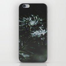 Forever Evergreen iPhone & iPod Skin
