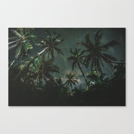 Exotic Jomalig Island Philippines at beautiful starry night Canvas Print