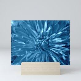 Flower | Flowers | Sky Blue Mums Mini Art Print