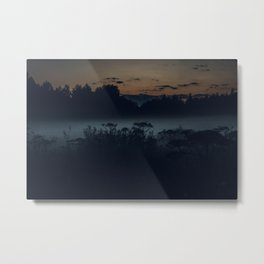Fog in the evening forest, nature Metal Print