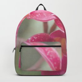 The Temple Tree Backpack