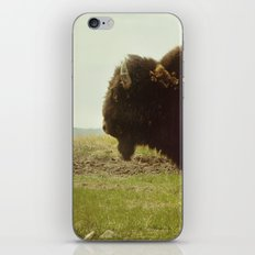 Stock-Still iPhone & iPod Skin