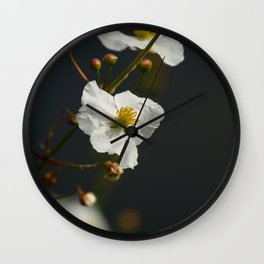Swamp Beauty Wall Clock