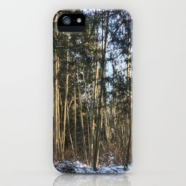 Winter at Home iPhone Case