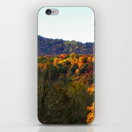 Tinker iPhone Skin