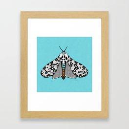 Leopard Moth Framed Art Print