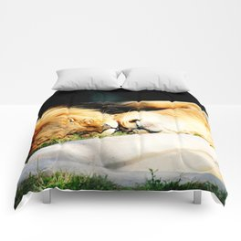 Cat Nap (Jungle Love) Comforters