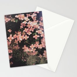 She Hangs Brightly Stationery Cards