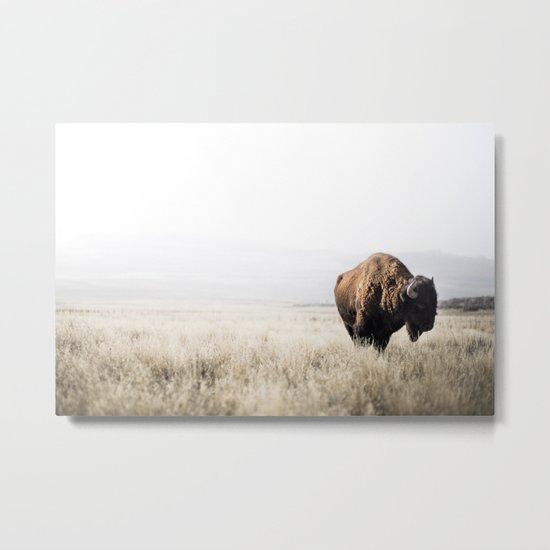 Bison stance Metal Print