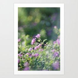 Promise (Magic Garden Series) Art Print