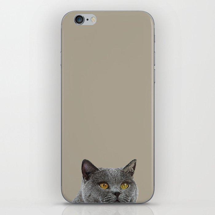 Curious cat home decor British Shorthair cat taupe background minimal design iPhone Skin