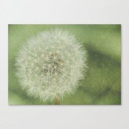 Just a Breath Away Canvas Print