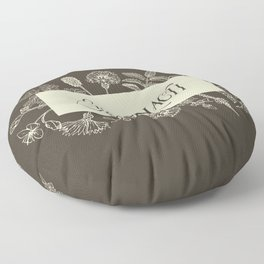 Sassenach in Sepia Floor Pillow