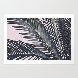 Sago Palm Art Print