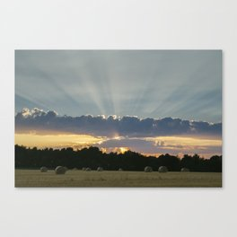 Field of round straw bales at sunset. Norfolk, UK. Canvas Print