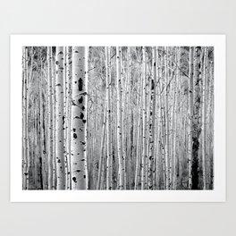 Aspen Tree Maze Art Print