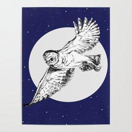 Athena Owl Poster