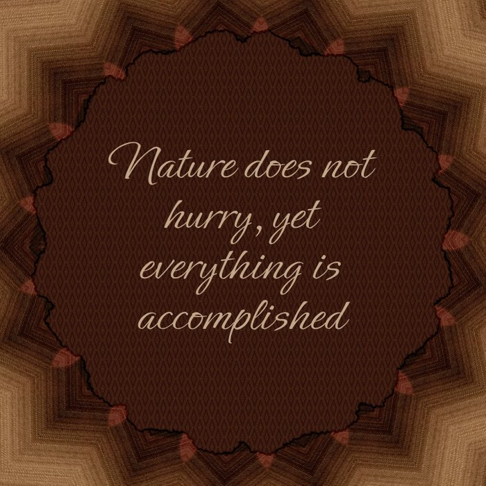 Nature Does Not Hurry Comforters