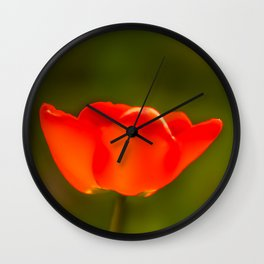 La tulipe orange Wall Clock