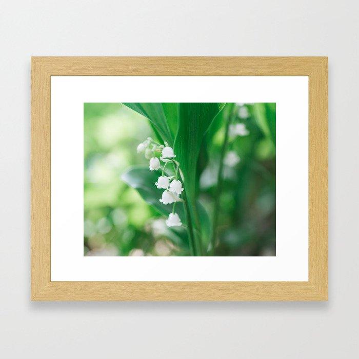 Spring Days Framed Art Print