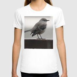 Over the Shoulder T-shirt