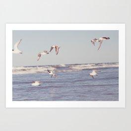 lullaby of birdland Art Print