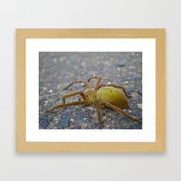 Green Spider Framed Art Print