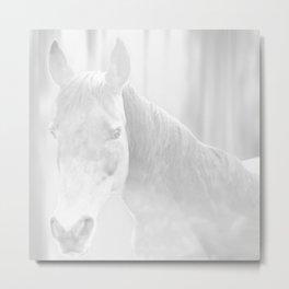 Island Horse - Soft Grey Metal Print