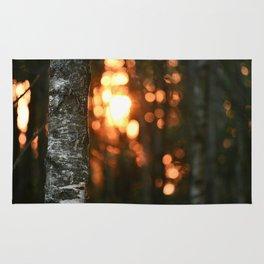 Sunset in Drawsko 5 Rug