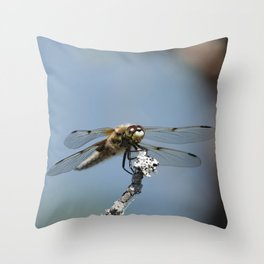 Dragonfly at standby  Throw Pillow