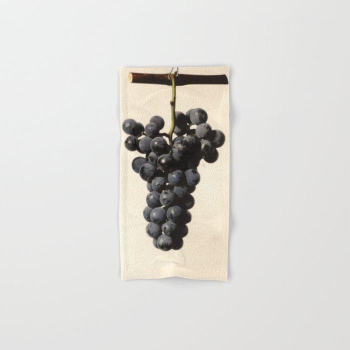 Vintage Concord Grapes Illustration Hand & Bath Towel