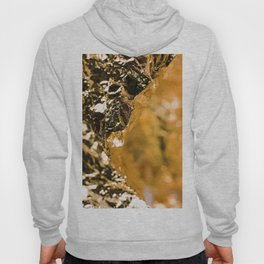 Goldie Seven Foil Face Hoody