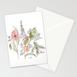 Natures Bounty Stationery Cards