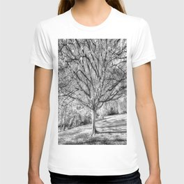 The Ghost Tree T-shirt