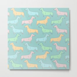 Colorful miniature dachshund dog pattern with turquoise background Metal Print