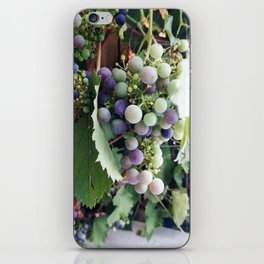 grape iPhone Skin